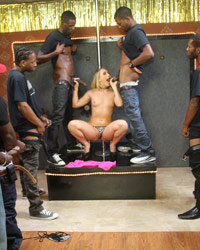 AJ Applegate Blacks On Blondes Violet